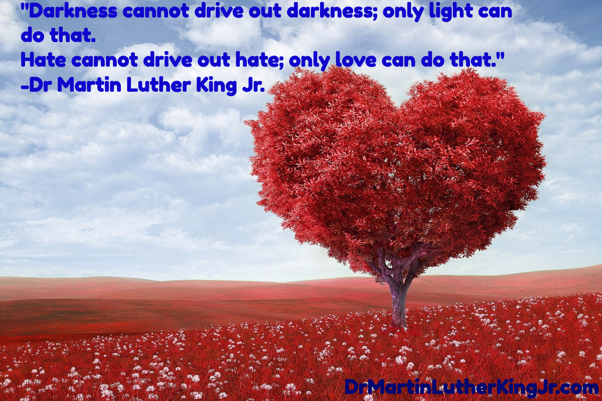 Darkness Cannot Drive Out Darkness Quote